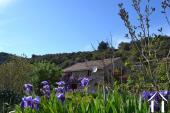 Une bergerie viticole avec vue près du Jaur