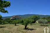 Stone house with guesthouse stunning views close to Ventoux