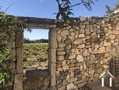 Propriété entourée des vignes ;vues sur Ventoux et Dentelles
